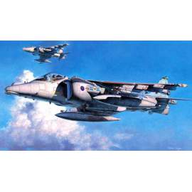 Hasegawa 1:48 Harrier Gr Mk.7 Royal Air Force